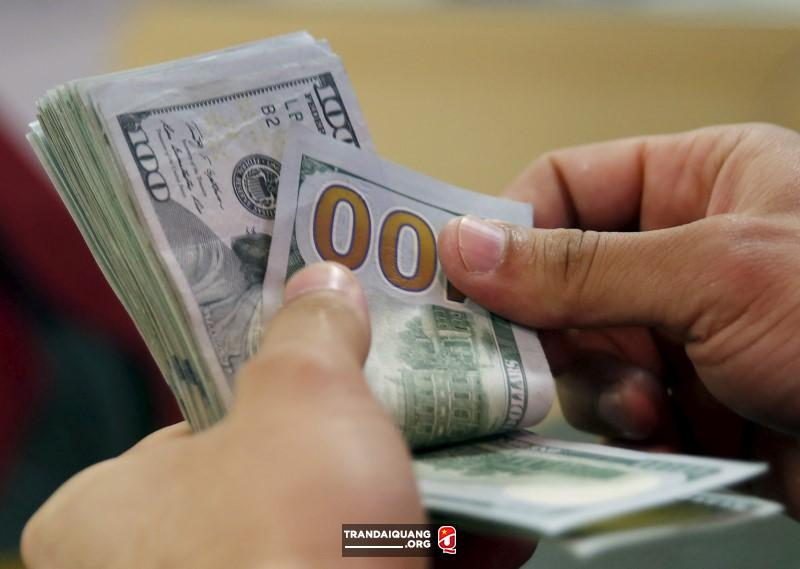 A customer counts his U.S. dollar money in a bank in Cairo